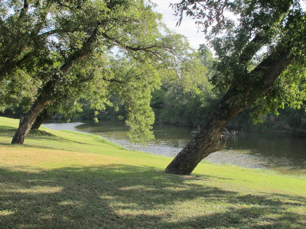 outdoors on the Pecan Bayou