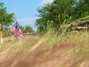 country road, US flag, native grasses