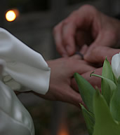 Bride and groom exchanging wedding rings eith some green leaves in the foreground.