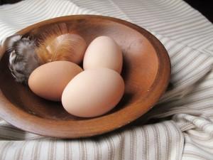 blog-eggs