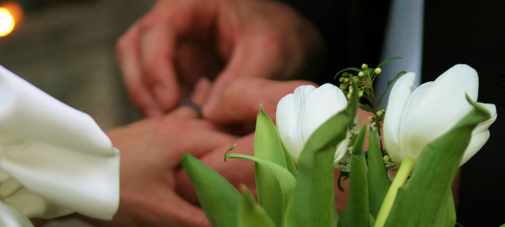 White tulips with a bride and groom exchanging rings in the background.